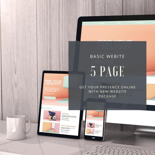 Basic Website Design Package